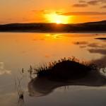 Dunas, PN da Lagoa do Peixe
