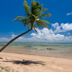 Praia do Patacho – Porto de Pedras -Alagoas