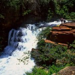 Trilha para Cachoeira  Frade
